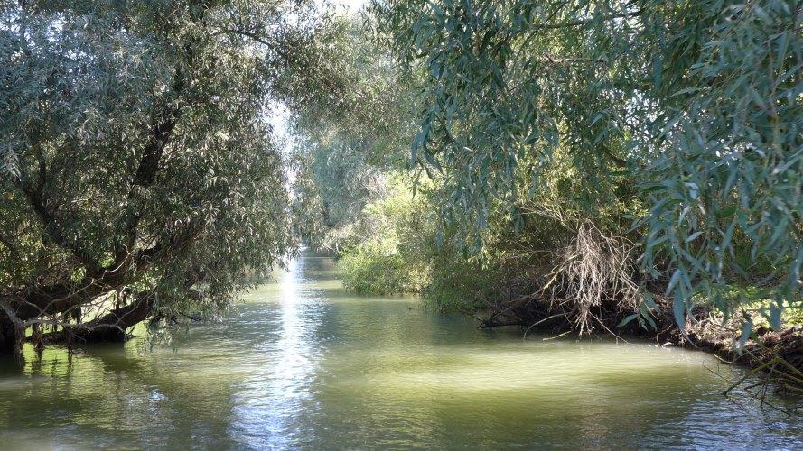 Un petit canal